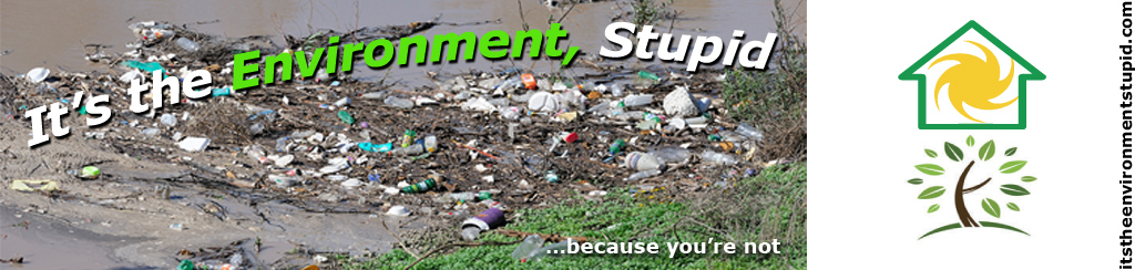 It's the Environment, Stupid